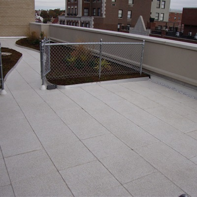 Assisted Living Facilities Green Roof in NYC
